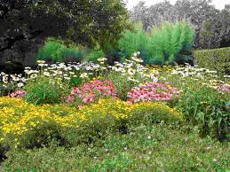 herbs courtyard planning gates fiberglass planner planter