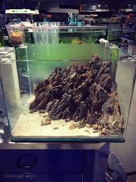 Diy Aquascape 99 Best Aquariums Images On Pinterest Aquascaping Fish Tanks