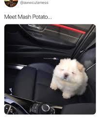 So Cute Meme - put me like this baby is so cute