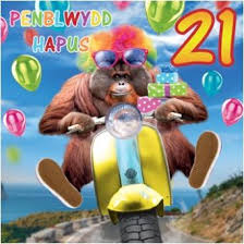 penblwydd hapus 21 welsh happy 21st birthday card welsh gifts