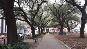 file oak trees lafayette square new orleans jpg wikimedia commons