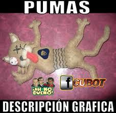 Pumas Vs America Memes - 11006421 871516346294983 8300309957606203401 n jpg
