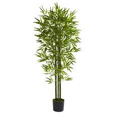 best indoor bamboo tree contemporary interior design ideas
