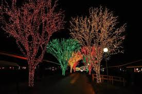 shady brook farm holiday light show 15 best christmas light displays in pennsylvania 2016
