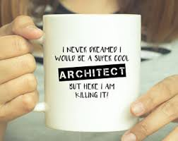 architect mug gift for architect i turn coffee into