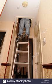 man using loft ladders to gain access to the attic england uk