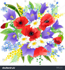 big spring beautiful bunch flowers poppys stock vector 45808006