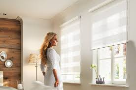 Window Roller Blinds Adding Stylishness To Homes With Dual Roller Blinds
