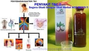 Obat Tbc obat herbal penyakit tbc teruh manjur dan aman