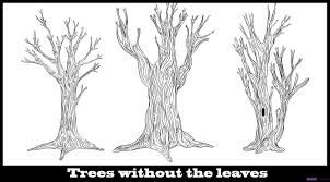pencil drawings trees without leaves drawing art u0026 skethes