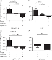 ccl5 activation of ccr5 regulates cell metabolism to enhance
