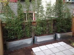 metal planters galvanized raised beds contemporary landscape