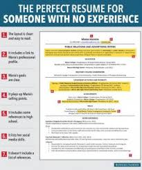 examples of resumes 87 breathtaking job professional summary for