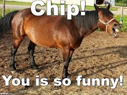 Meme Chip - pokeme meme generator find and create memes