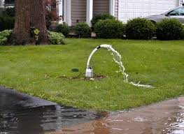 download backyard flooding solutions garden design
