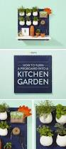 indoor kitchen gardening review home outdoor decoration