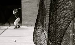 how to build your own batting cage at home coldwell banker blue