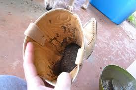 cowboy boot planters dream a little bigger