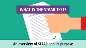 assessment management system all about the staar test