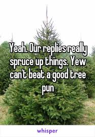 our replies really spruce up things yew can t beat a tree pun