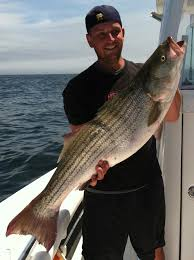 cape cod fishing charter reviews reel deal fishing charter reviews
