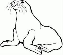 excellent sea lion coloring pages with sea animal coloring pages