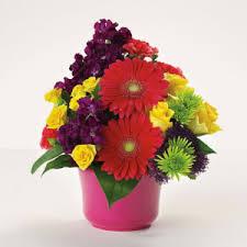 Graduation Flowers Graduation Flowers And Gifts Hill U0027s Florist And Fruit Baskets