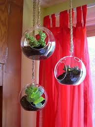 flat bottom round globe airplant terrarium kits hanging glass