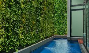 Wall Gardening System by Agro Wall Vertical Garden Planting System May 2012