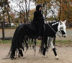 Horse Rider Halloween Costume 25 Horse Halloween Costumes Ideas Horse