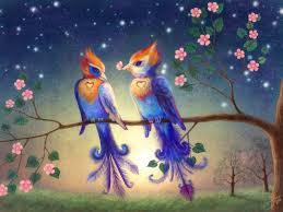 beautiful wallpaper beautiful wallpapers and images beautifull love bird wallpaper images