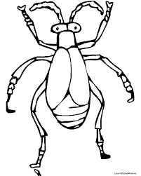beetle coloring getcoloringpages