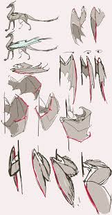 best 25 bat wings ideas on pinterest exercises for bat wings