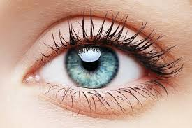 can you use primer as eye primer quora
