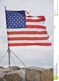 Ripped American Flag Tattered Flag Stock Photo Image Of Winthrop Ripped 29131850