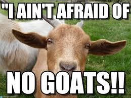 Afraid Meme - i ain t afraid of goat meme on memegen