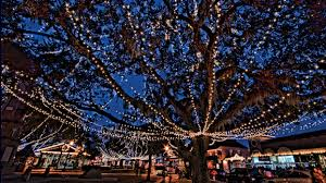 st augustine lights tour saint augustine nights of lights 2016 stay with us at beachers lodge