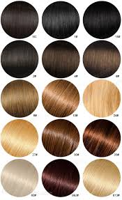 hair color chart full lace wigs lace front wigs 360 lace wigs affordable wigs hair