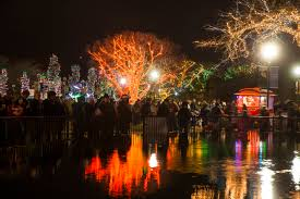 Hours For Zoo Lights by Lincoln Park Zoo Announces New Events As Part Of 22nd Annual