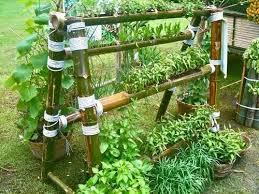 Urban Herb Garden Ideas - 166 best urban garden vertical images on pinterest gardening