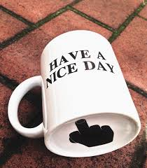amazon com have a nice day mug middle finger cute mugs funny