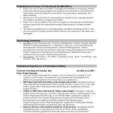 resume exles for professionals resume exles for professional fresh professional summary resume