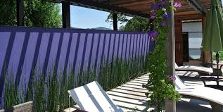 5496 Best Small House Images by Infuse Your Yard With Color U2013 Garden Paint Tips From A Pro