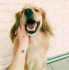 dog tattoo ideas for dog lovers