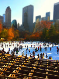 107 best thanksgiving in nyc images on nyc