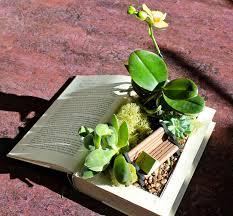 squash blossom farm a little garden reading