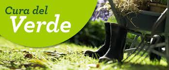 cura giardino la cura verde tra orto e giardino corsi e consigli viridea
