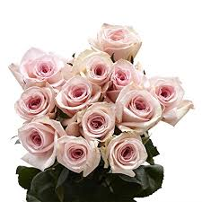 flowers express globalrose 50 pink roses fresh flowers express delivery