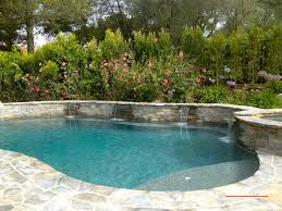 custom features will make your pool truly one of a kind