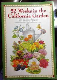 winter in my southern california garden zeitclites